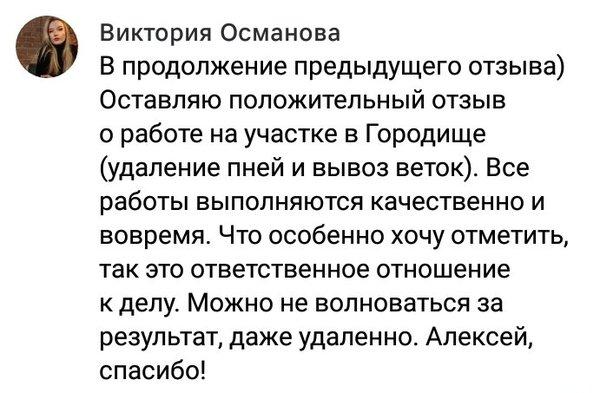 Отзыв Виктории о работе Алексея Наботова